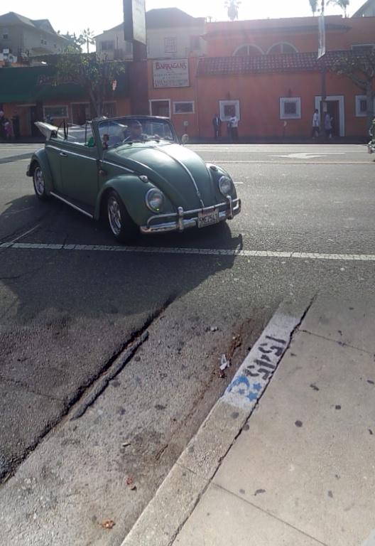 Parade green bug angle